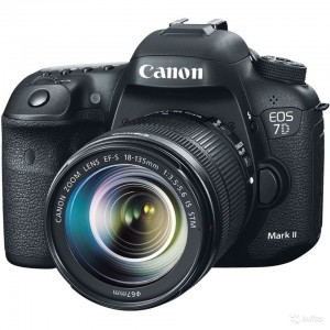 CANON 7D MARK II 18-135 IS STM
